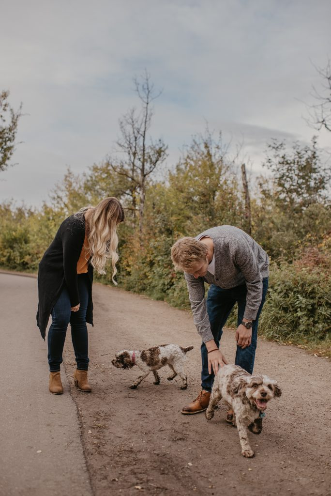 Edmonton dog park engagement photos