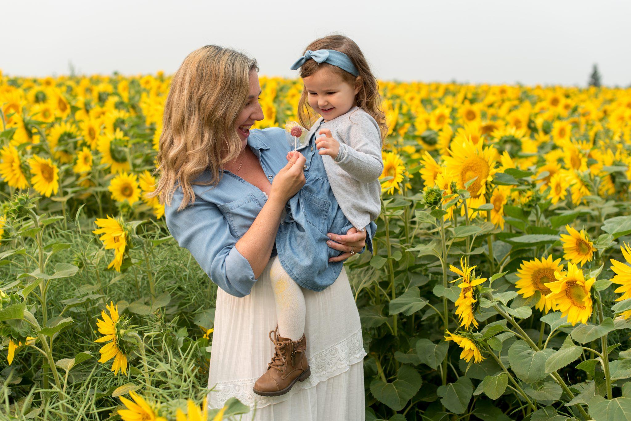 Sunflower Family Photos in Edmonton Alberta with Sturgeon Sunflowers