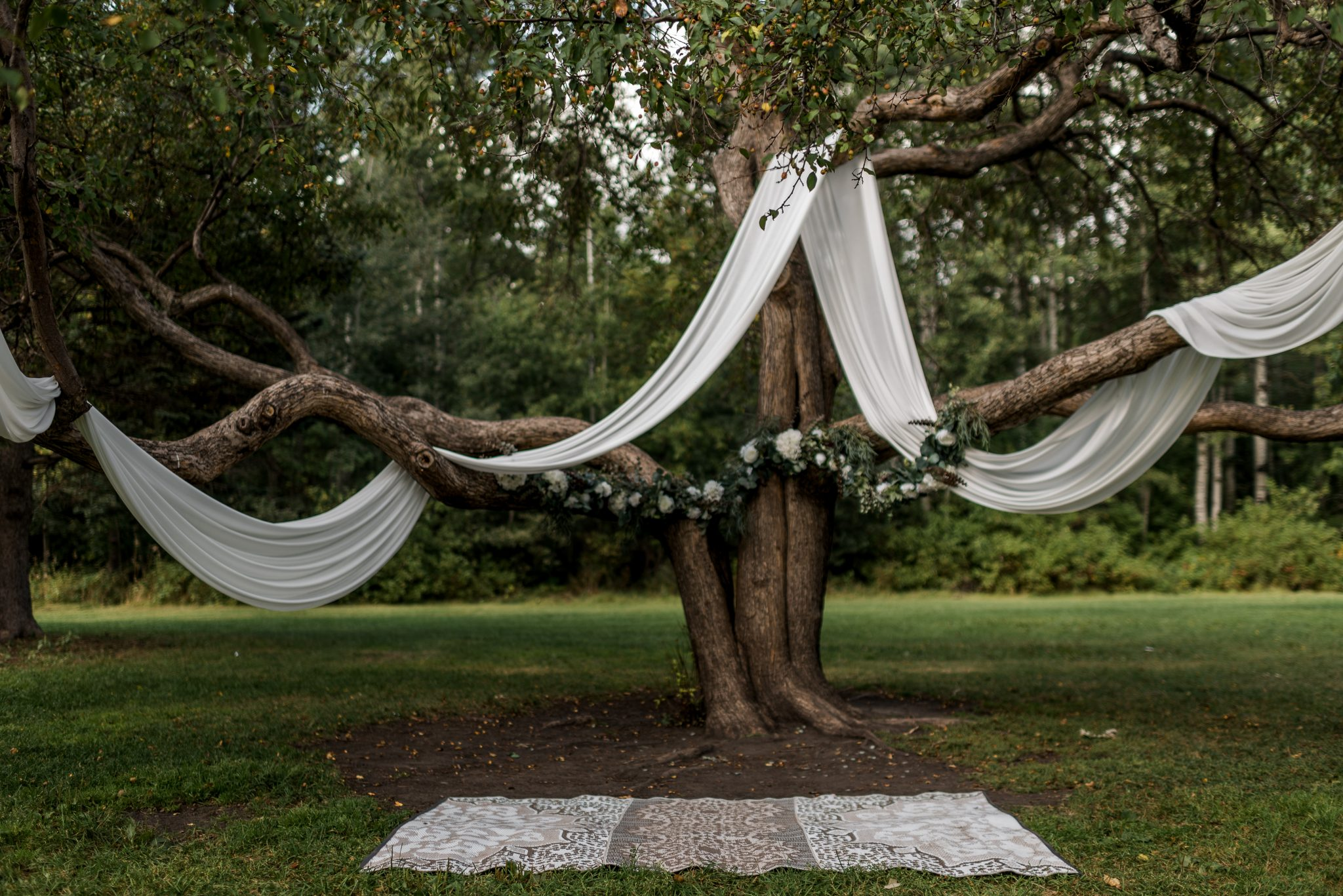 Romantic ceremony installation and decor set up in Hawrelak Park under a tree