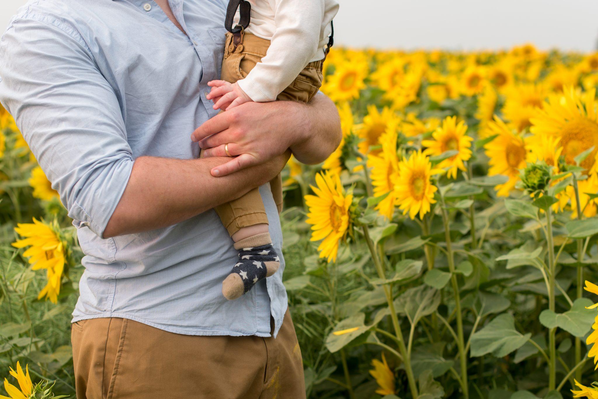 Sunflower Field Family Photos Edmonton Alberta